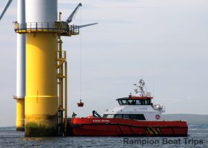CTV working on Rampion